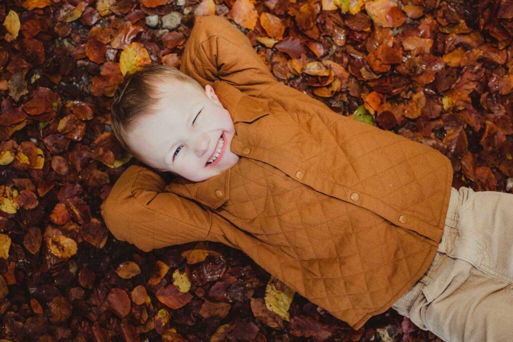 billeder i efterårets farver